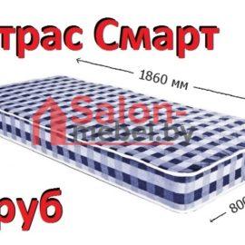 Матрас ортопедический Смарт 800х1860 см
