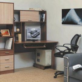 Письменно-компьютерный стол ПКС-10